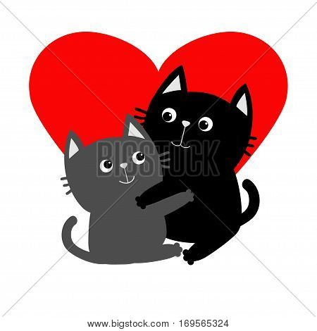 Black Gray Cat hugging couple family. Hug embrace cuddle. Red heart. Happy Valentines day Greeting card. Cute funny cartoon character. Kitty Whisker Baby pet White background. Isolated. Flat Vector