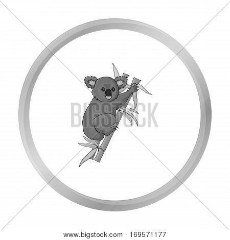Australian koala icon in monochrome design isolated on white background. Australia symbol stock vector illustration.