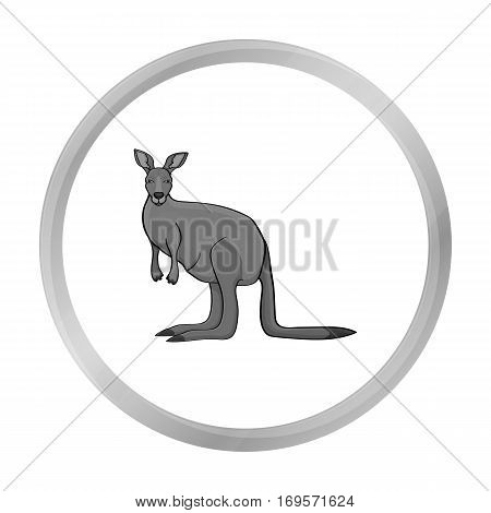 Kangaroo icon in monochrome design isolated on white background. Australia symbol stock vector illustration.