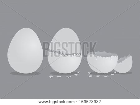 Vector illustration of perfect egg cracked egg and broken pieces of shells isolated on grey background.