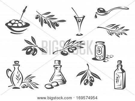 Olives vector icons. Vector isolated emblems of olive oil seasoning or dressing bottle, fresh olive-tree branch, green olives in alcohol cocktail drink, pickled olives snack in bowl for product package design