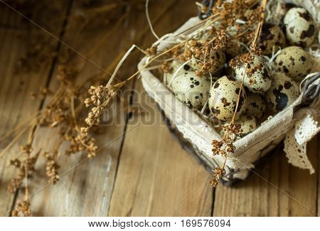 Quail eggs in a lined wire basket, beige dry flowers on barn wood background, Easter, rustic vintage style, kinfolk, simplicity, top view, close up