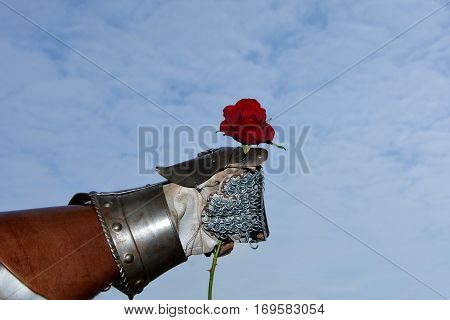 The gentleman - an iron knight's hand holds red rose in the fist before blue sky