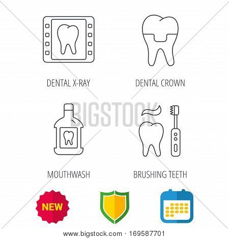 Dental crown, x-ray and brushing teeth icons. Mouthwash linear sign. Shield protection, calendar and new tag web icons. Vector