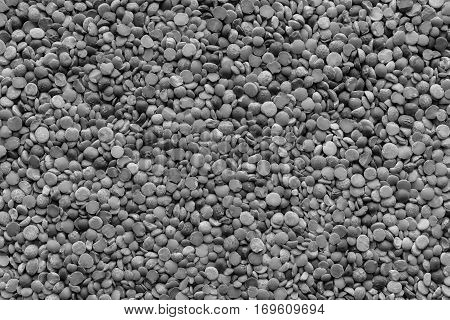 background and texture of dried shredded peas of dark gray monochrome tone