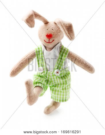 Cute cuddly bunny on white background