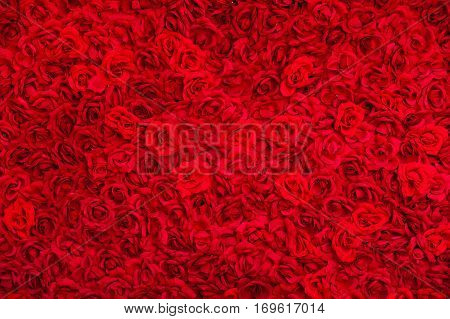 Carpet of red roses, the flowers backgound