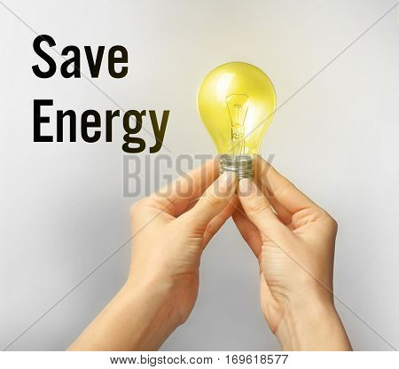 Female hands holding light bulb. Text SAVE ENERGY on background