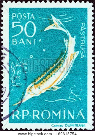 ROMANIA - CIRCA 1957: A stamp printed in Romania from the