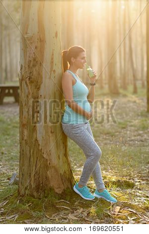Pregnant Sporty Woman Drinking Healthy Detox Smoothie
