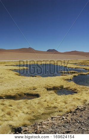 Picturesque landscape in the cordillera of the Andes