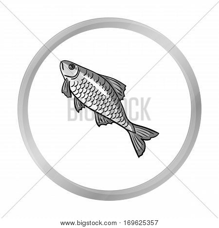 Fish icon in monochrome design isolated on white background. Fishing symbol stock vector illustration.
