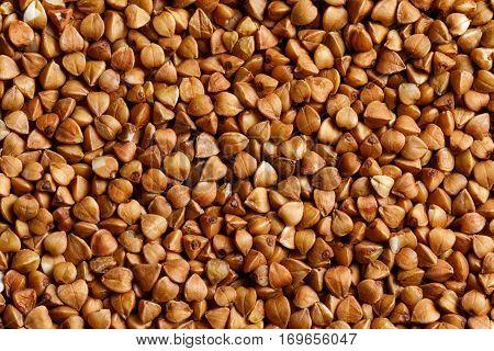 buckwheat raw food ingredient texture macro close up detailed