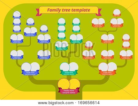 Family tree template. Modern flat style illustration of tree with green crown branches and photo borders with ribbons. Genealogy table vector infographic.