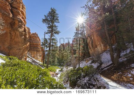 Snowy hoodoo forest at Bryce Canyon National Park in Southern Utah.