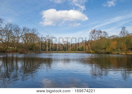 Park in the united kingdom with a large lake surrounded by leafless trees during the winter.
