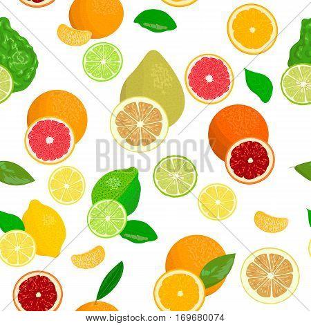 seamless pattern vector collection of realistic citrus fruits and slices. Bergamot, lemon, grapefruit, lime, mandarin, pomelo, orange, blood orange. for cosmetics, prints textile banners decoration