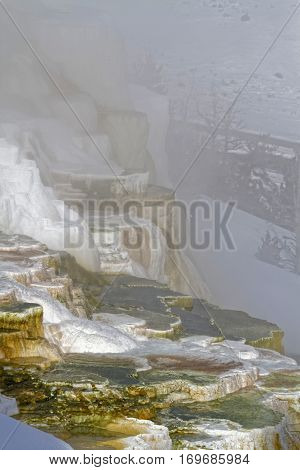 Mammoth Hot Springs Winter Landscape, Yellowstone National Park