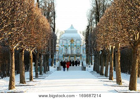 TSARSKOYE SELO (PUSHKIN) RUSSIA - JANUARY 04 2017: Hermitage Alley of the Catherine Park in Pushkin suburb of Saint Petersburg