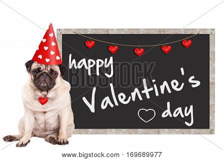 grumpy cute pug puppy dog wearing party hat with hearts sitting next to blackboard sign with text happy valentine's day on white background