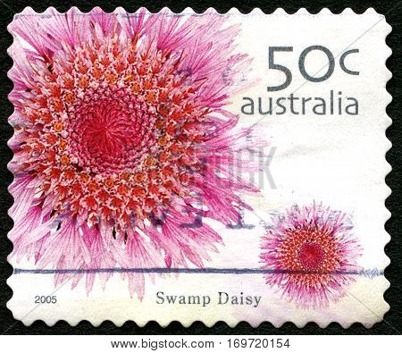 AUSTRALIA - CIRCA 2005: A used postage stamp from Australia depicting an image of a Swamp Daisy flower circa 2005.