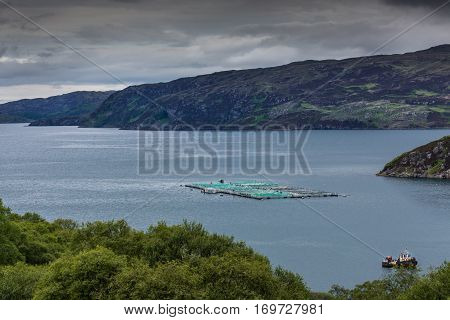 Assynt Peninsula Scotland - June 7 2012: Large pisciculture platform floats on the gray salt waters of Loch A Chairm Bhain under stormy skies. Green vegetation upfront mountains as backdrop.