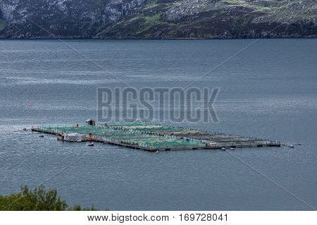 Assynt Peninsula Scotland - June 7 2012: Closeup of large pisciculture platform floats on the gray salt waters of Loch A Chairm Bhain. Green netting Mountains as backdrop. Orange clad workers.