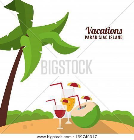 vacations paradisiac island beach cocktails palm vector illustration eps 10