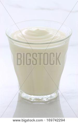 Plain French Style Yogurt