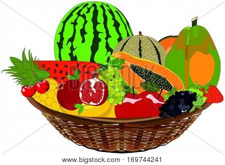 Vector Fruit Basket healthy tropical fresh food meal rich vitamins green grape cherry apple banana papaya melon watermelon pomegranate Pineapple tree seed leaf complementary nutrition sugar free
