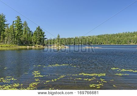 Quiet Bay in the North Woods on Crawford Lake in Quetico Provincial Park in Ontario