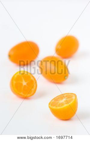 Kumquats_3