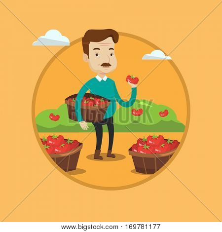 An adult farmer holding basket with tomatoes. Farmer showing ripe red tomato on the background of field with bushes of tomatoes. Vector flat design illustration in the circle isolated on background.