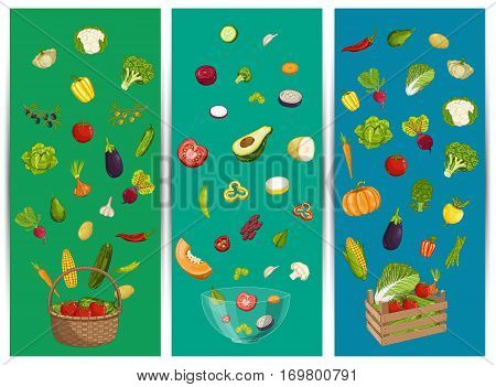 Organic farm food flyer set vector illustration. Fresh natural harvest of vegetable, eco farming, vegetarian nutrition. Healthy farm product advertising with pepper, onion, cabbage, eggplant, corn