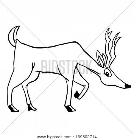 deer isolated on white cartoon