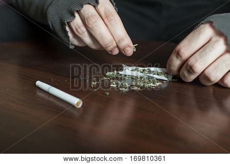 Addict hands making marijuana jamb closeup.