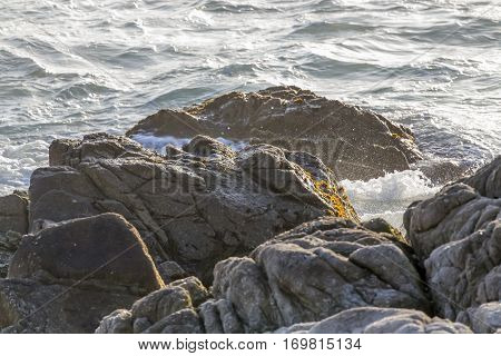 Shoreline of the California Coast