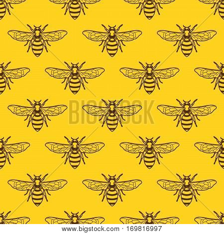 Vector Seamless Yellow Pattern With Outline Bee. Organic Honey Background.