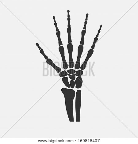 human wrist hands bones icon - vector illustration