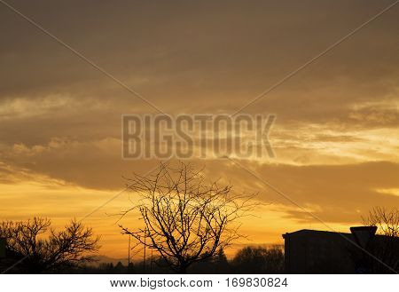 Golden Sunset Over Silhouettes Of Trees And Houses
