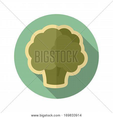 Cauliflower flat icon. Vegetable vector illustration eps 10
