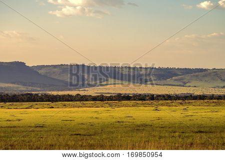 Scenic African savannah landscape in Maasai Mara, Kenya