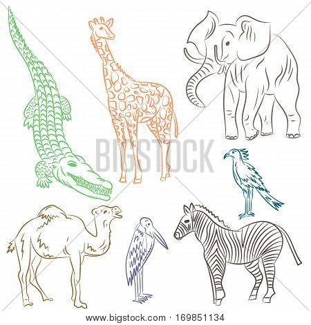 Colorful Hand Drawn African Animals and Birds. Doodle Drawings of Elephant Zebra Giraffe Camel Marabou and Secretary-bird. Sketch Style. Vector Illustration.