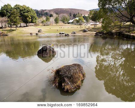 Pond with rocks in Nara koen park in Nara, Japan