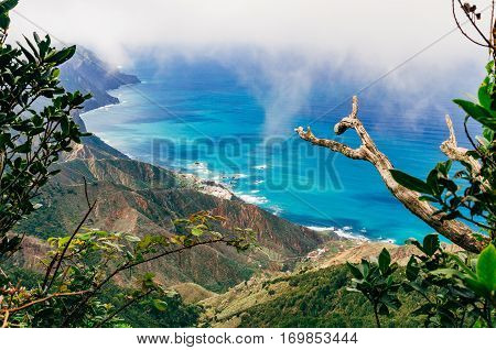 Top view on nothern costline of Tenerife island through laurisilva forest Canarias Spain