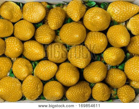 Yellow artificial colored strawberries texture - fruit background