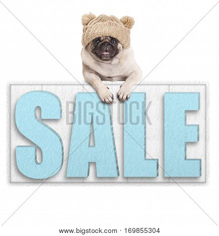 cute pug puppy dog wearing knitted hat for winter cold hanging with paws on big sale sign isolated on white background