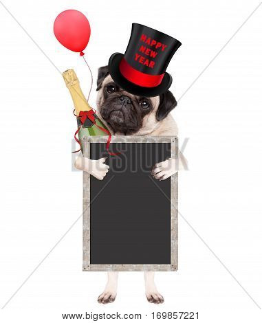 cute pug puppy dog wearing top hat with text happy new year holding champagne bottle and blank blackboard sign isolated on white background
