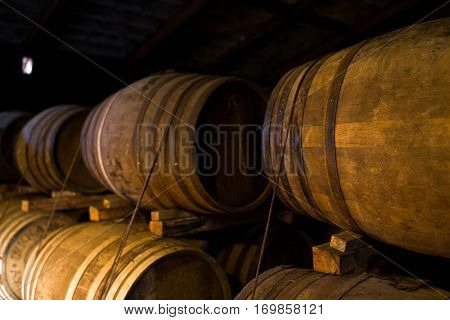 Wooden beer barrel