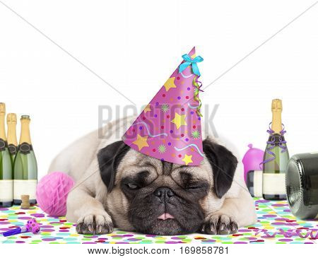cute pug puppy dog wearing party hat lying down on confetti fed up and drunk on champagne tired of partying on white background